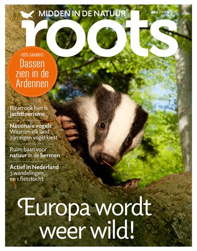 Roots magazine cover